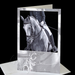 Black & White Duo Greeting Card