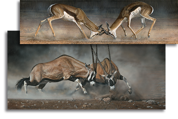 Reference painting for springboks commission